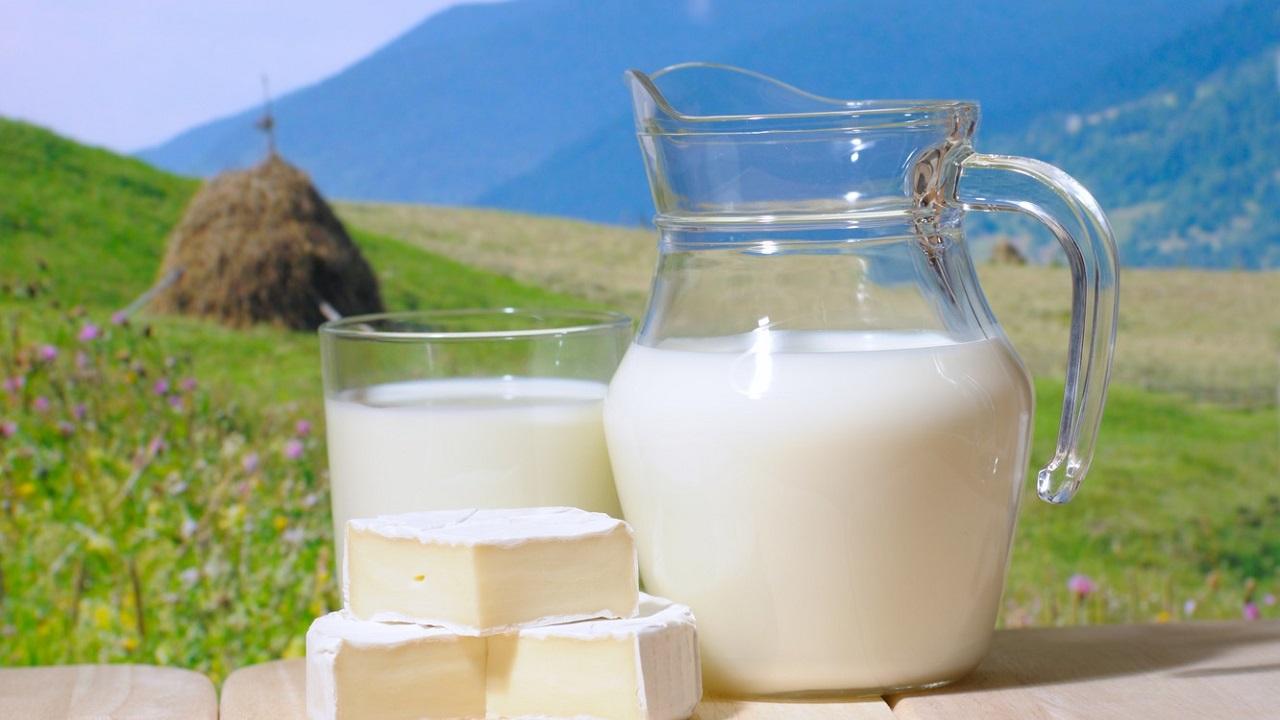 Как проверить молоко на качество и натуральность?